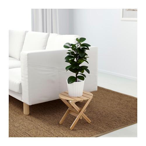 piedistallo per piante